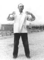 Yao Zongxun - Zhanzhuang